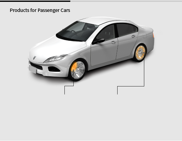 Products for Passenger Cars